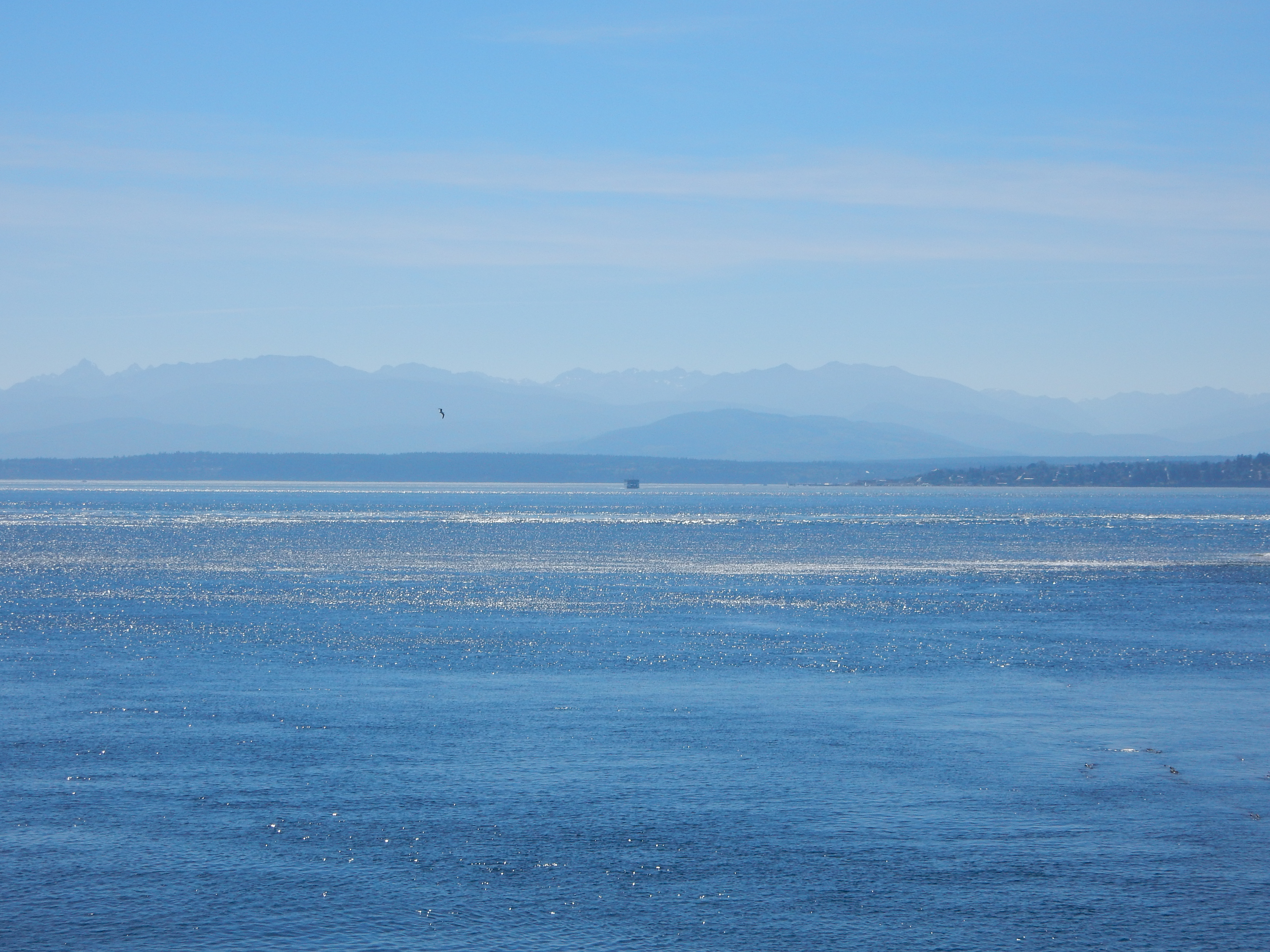 The Olympic Mountains from the Port Townsend ferry.