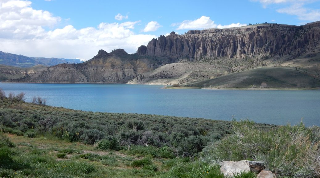 A set of rock spires overlooks the Blue Mesa Resevoir.