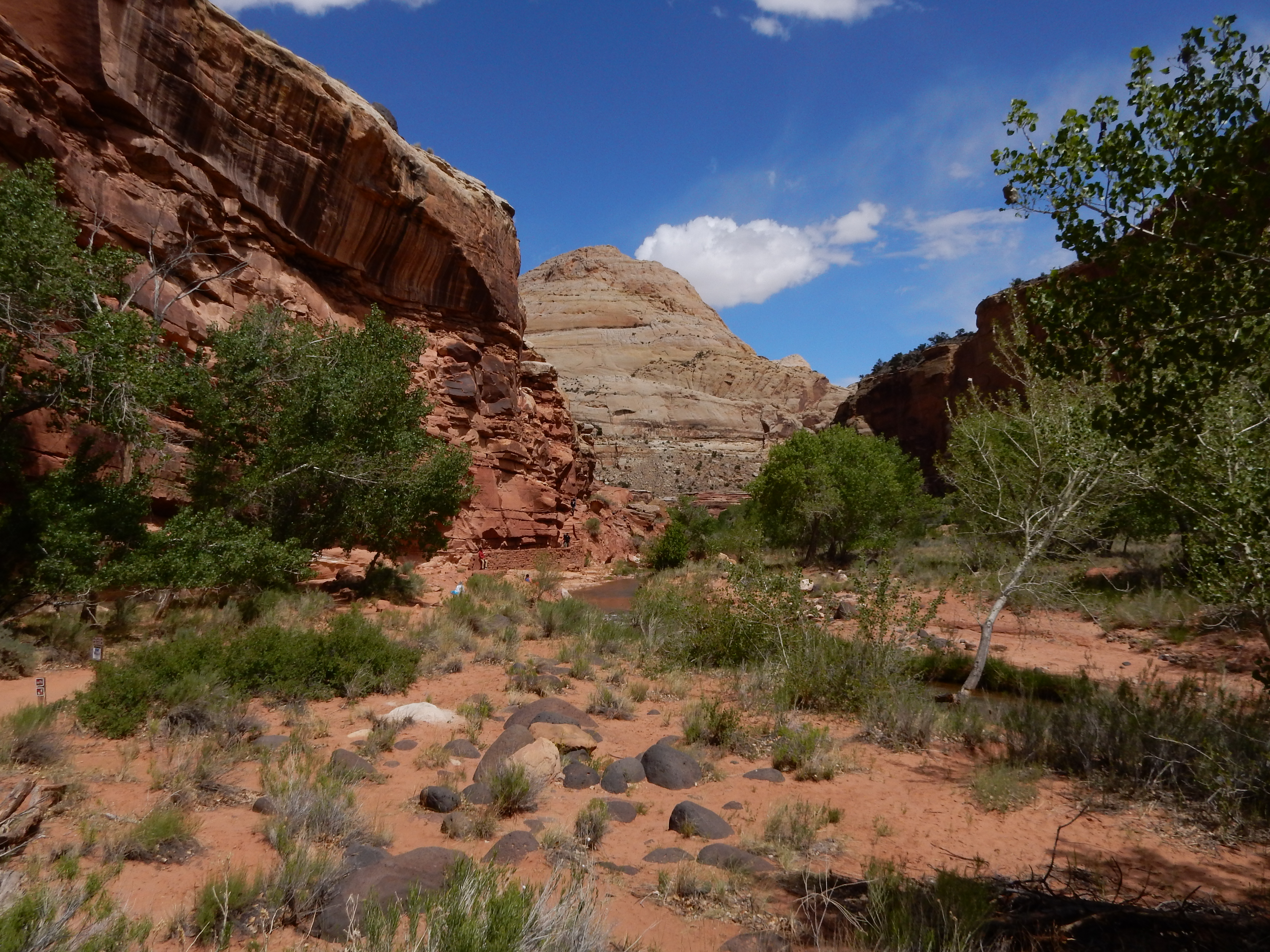 A look down the river canyon at Capitol Reef NP.