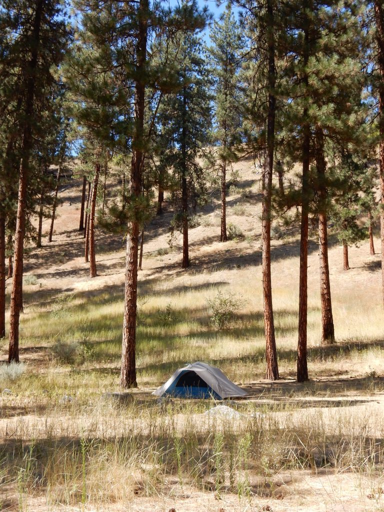 My tent at the Hot Springs campground in the Boise National Forest, showing the ridge above the campground.My tent at the Hot Springs campground in the Boise National Forest, showing the ridge above the campground.