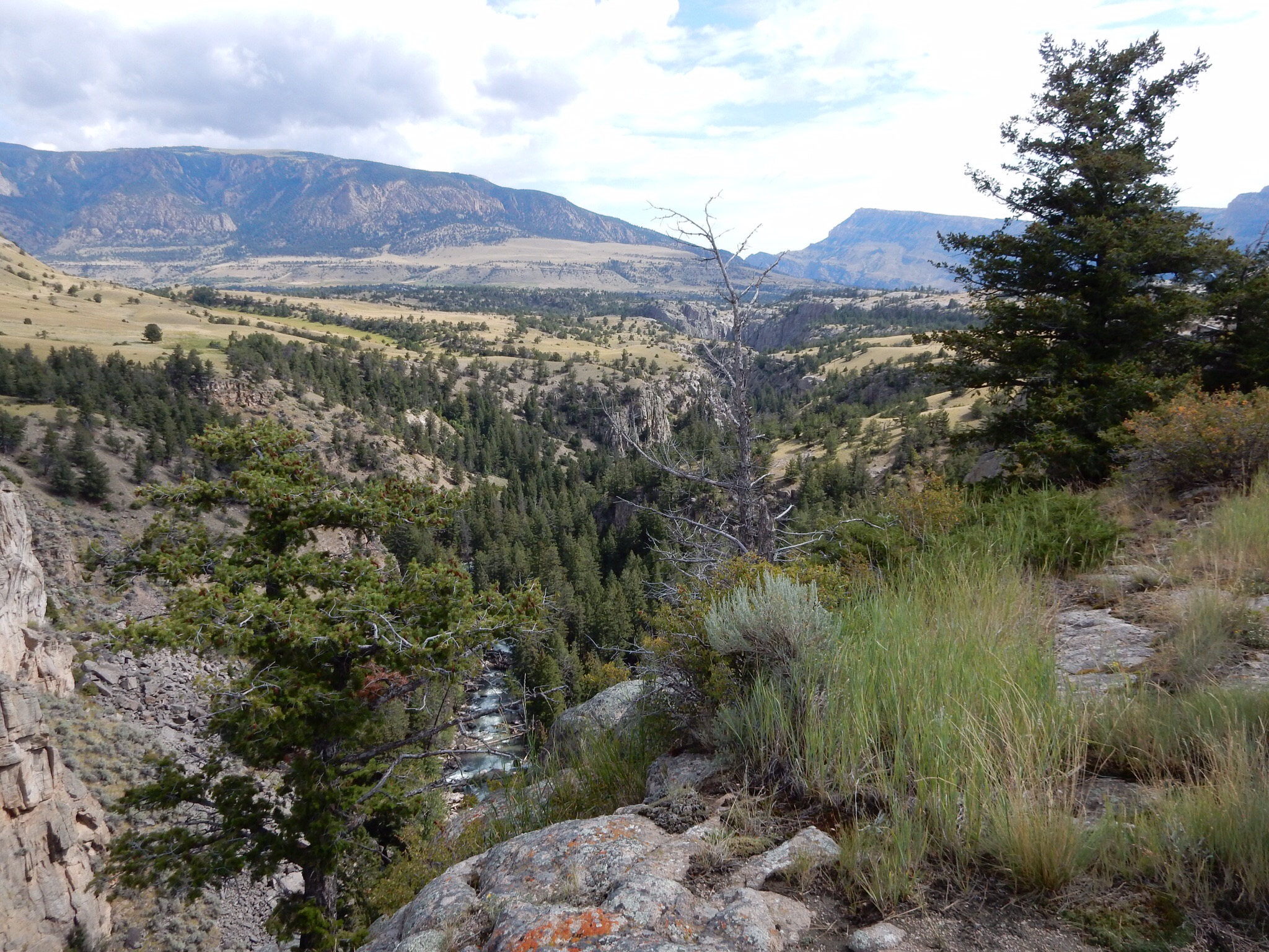 Sunlight Gorge, along the Chief Joseph Scenic Byway.V