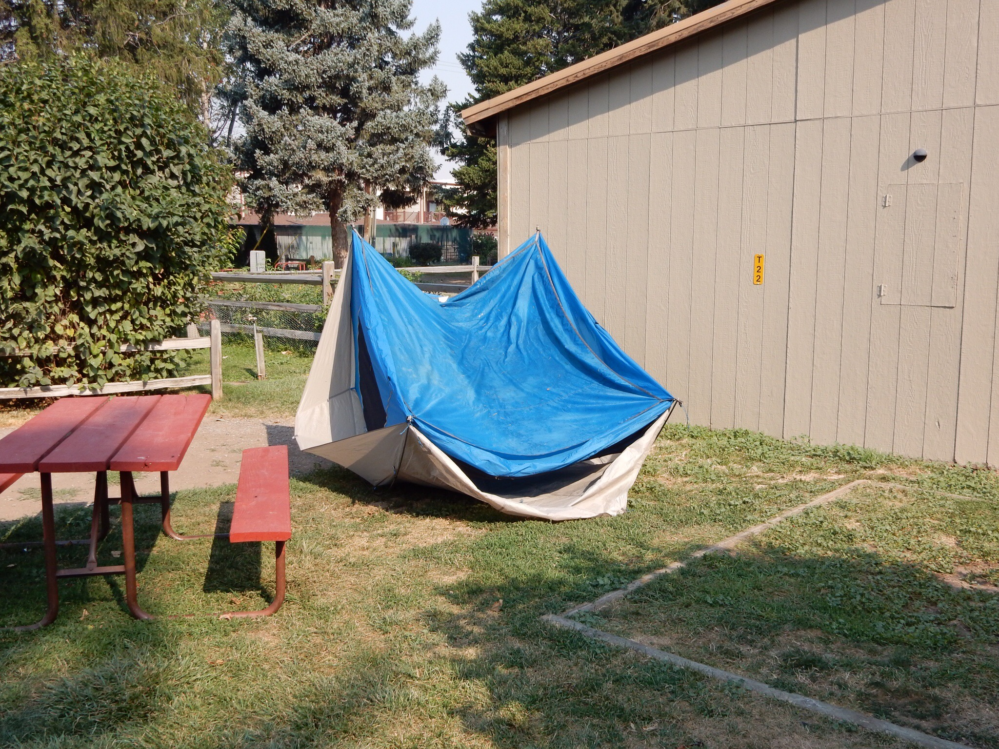 Using the morning Missoula sun to dry the last of the Cody rain from my tent.