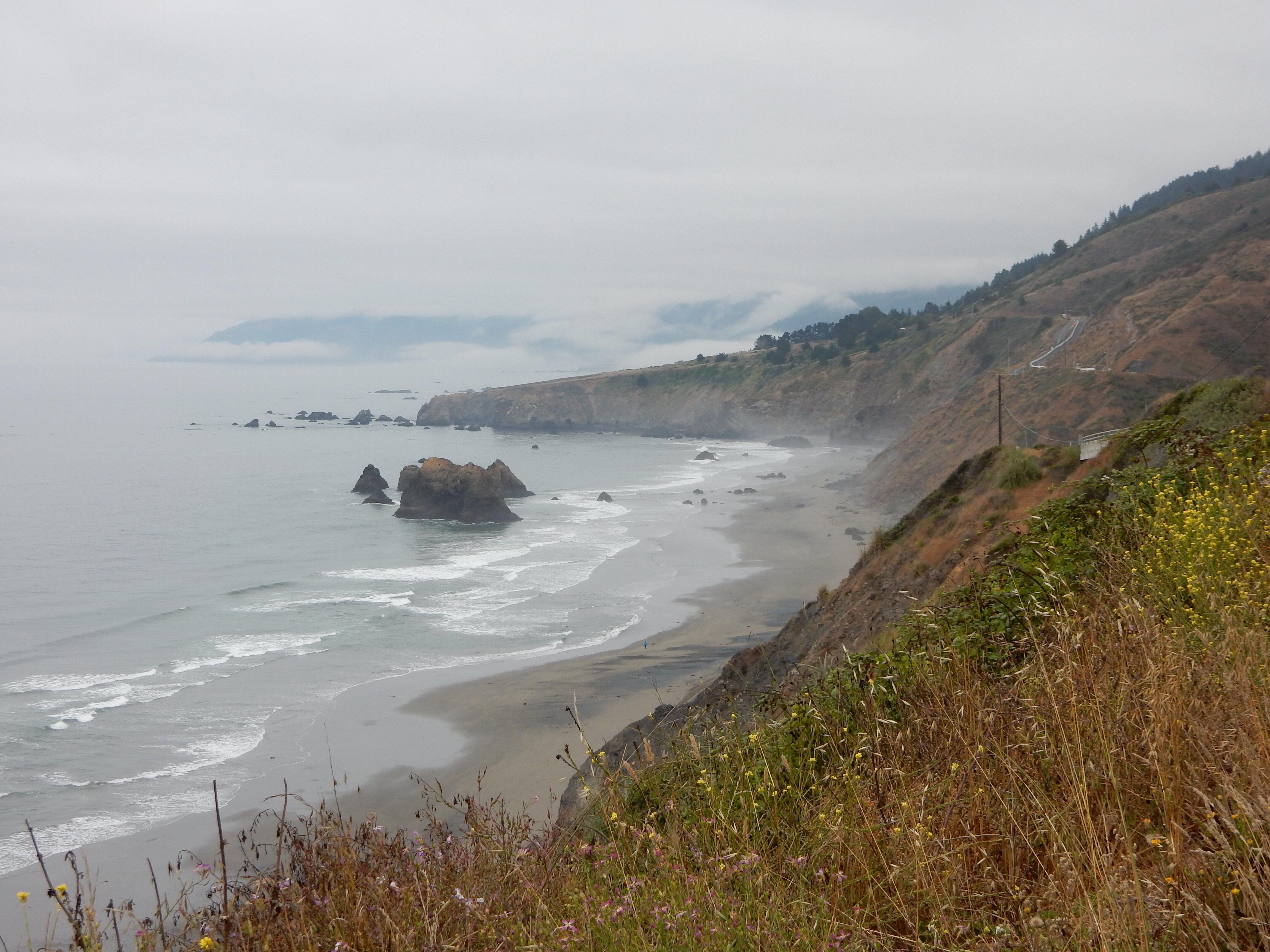 A view north along the coast just north of Bruhel Point.