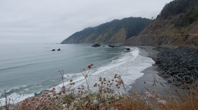 A view north from where California Highway 1 heads inland and leaves the coast behind.