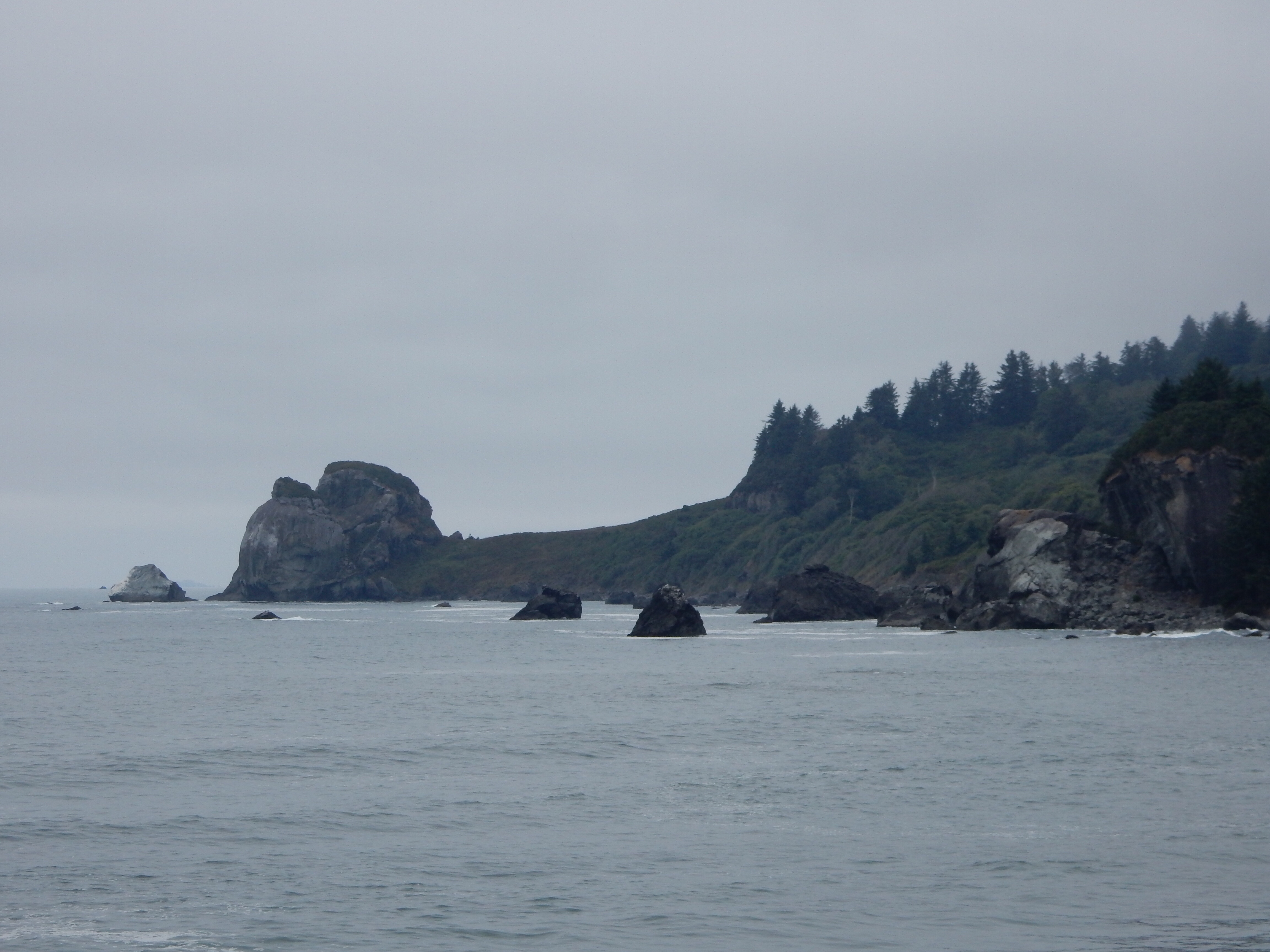 A tighter view of a point at the extreme south edge of Del Norte Coast Redwoods State Park.