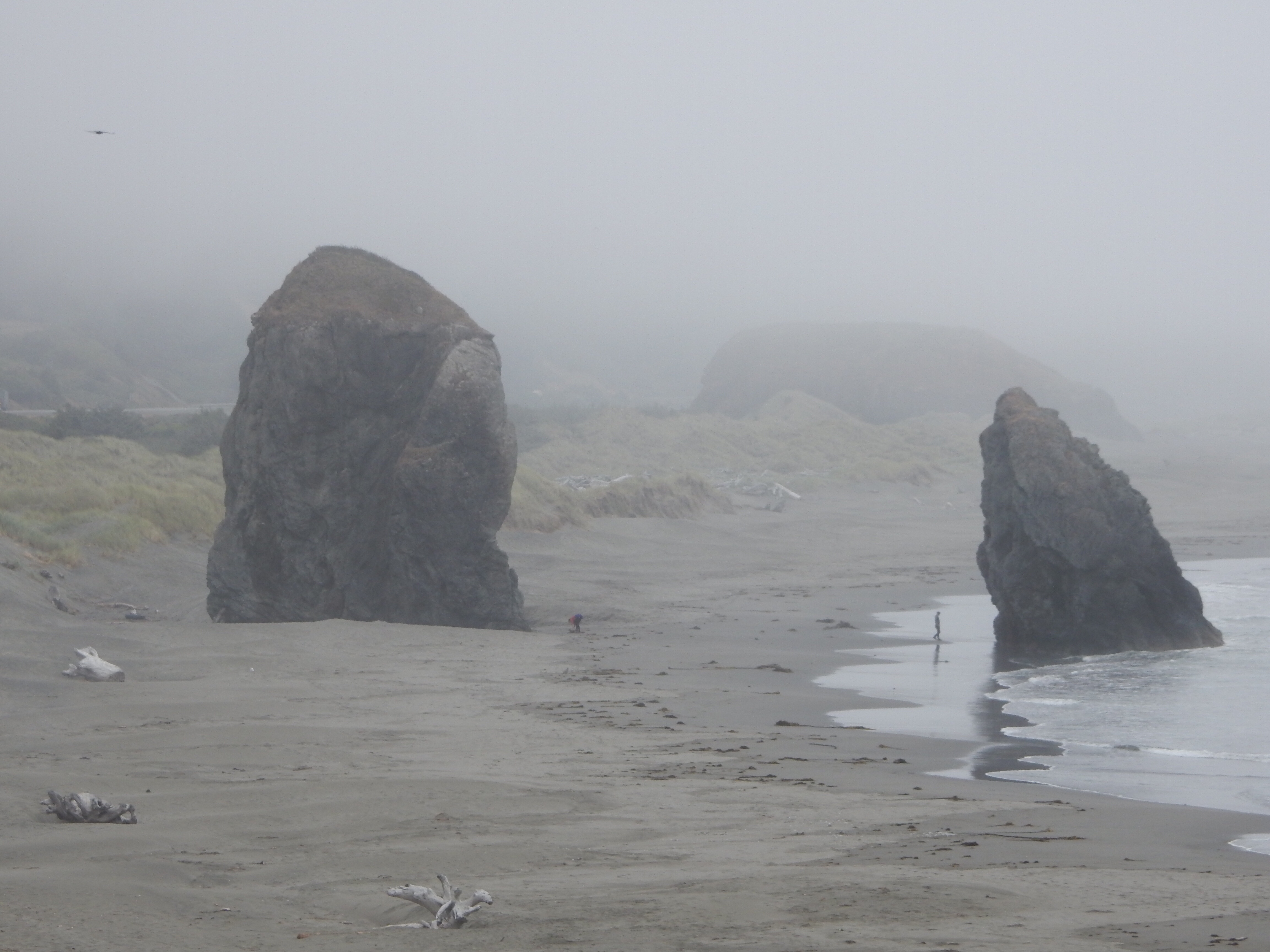 A closer view of a couple of coastal monoliths punctuate the beach just south of the mouth of Myers Creek. There is a person at the base of each monolith for scale.