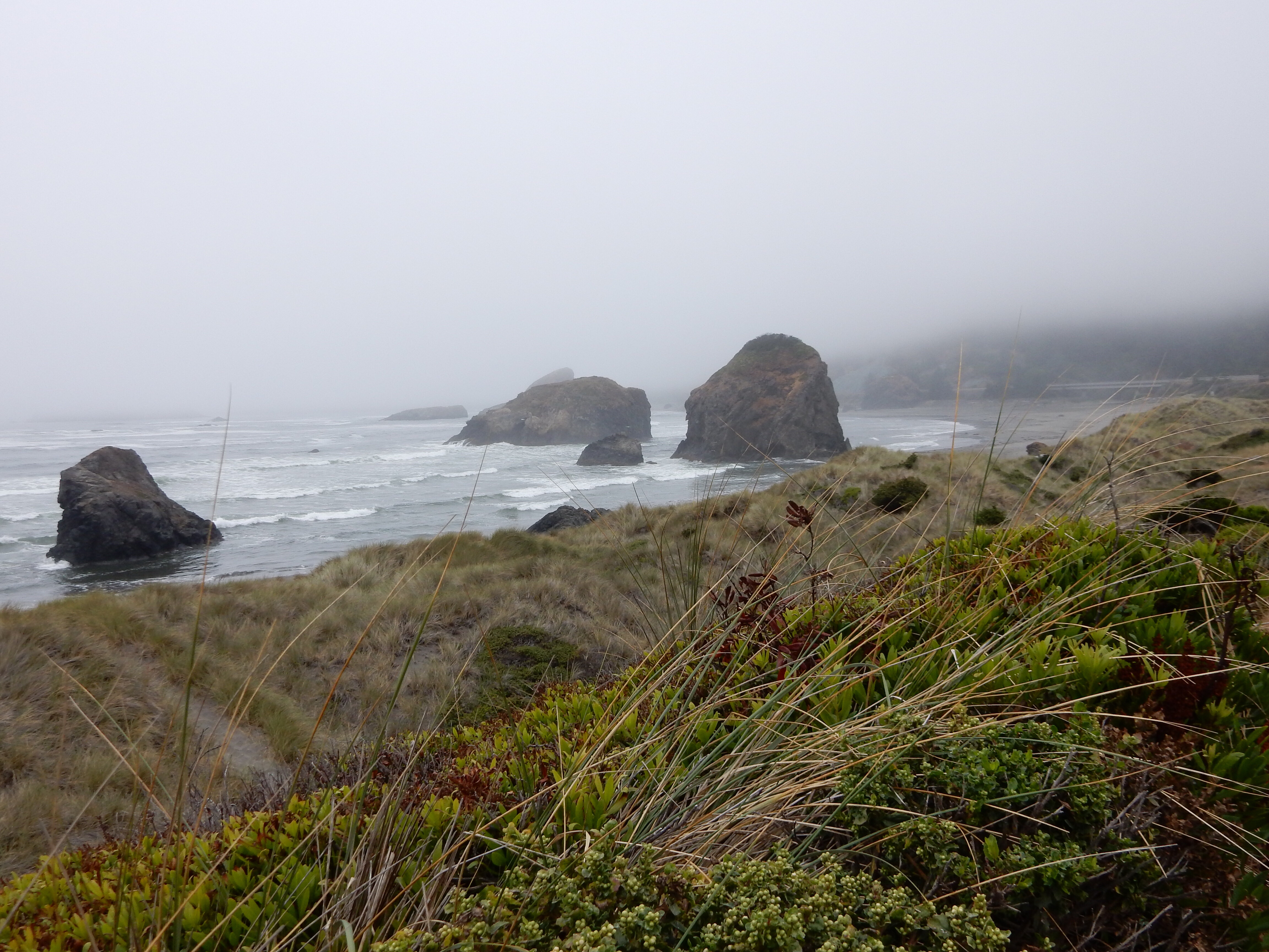 Looking north towards the coastal monoliths south of the mouth of Myers Creek.