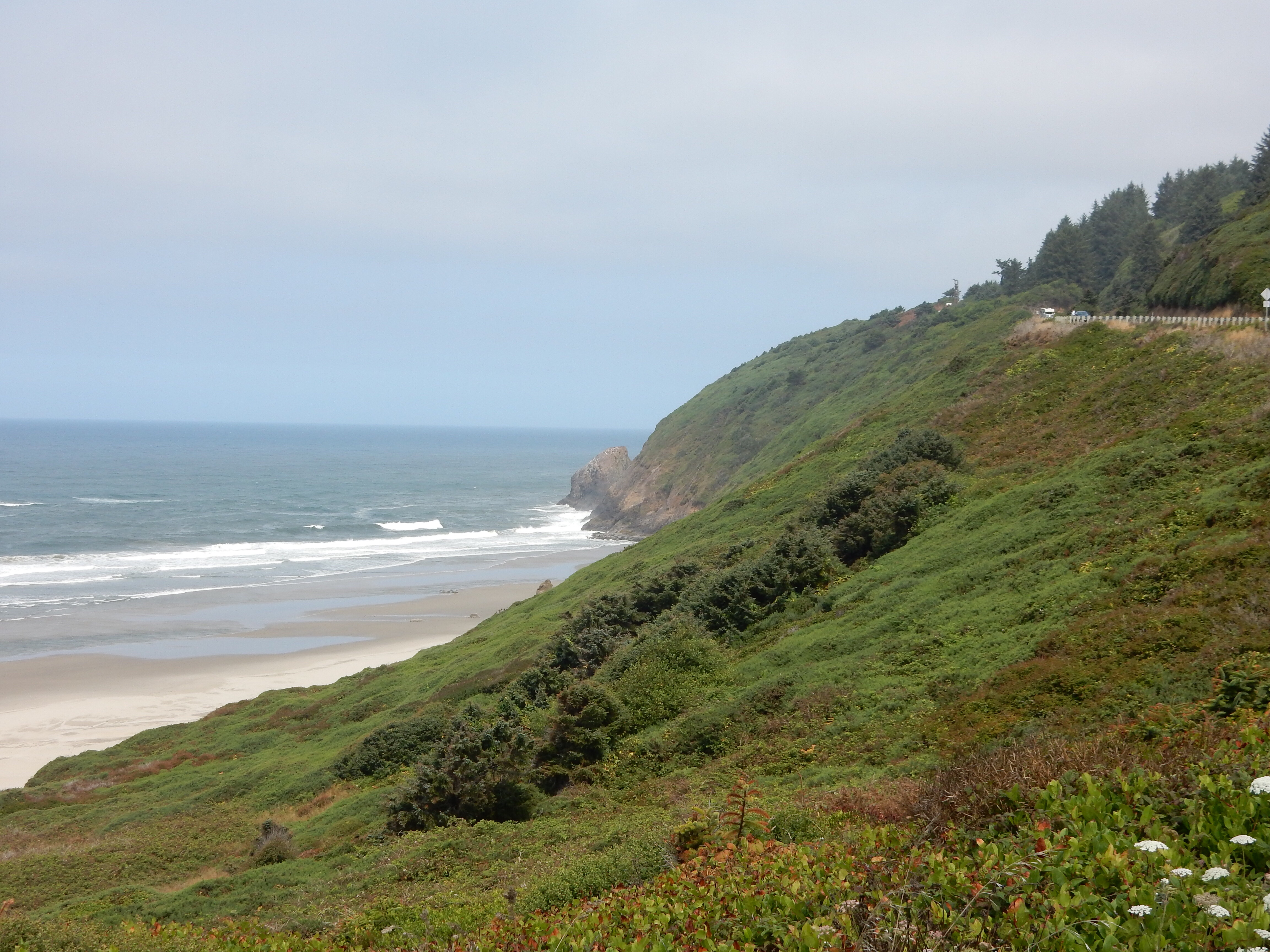 A look north along the coast north of Florence, OR.