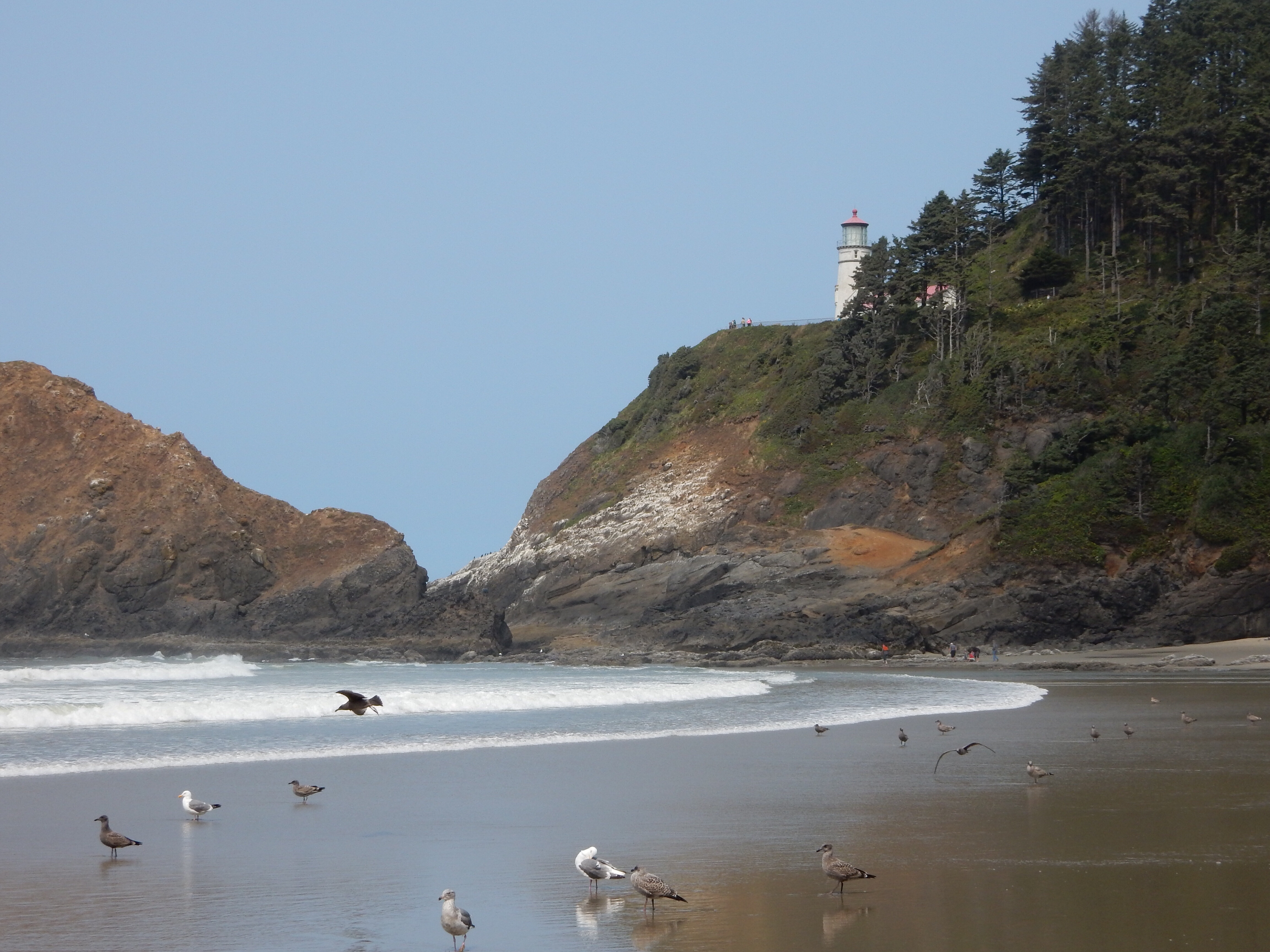 A view of the Heceta Head lighthouse from the nearby beach.