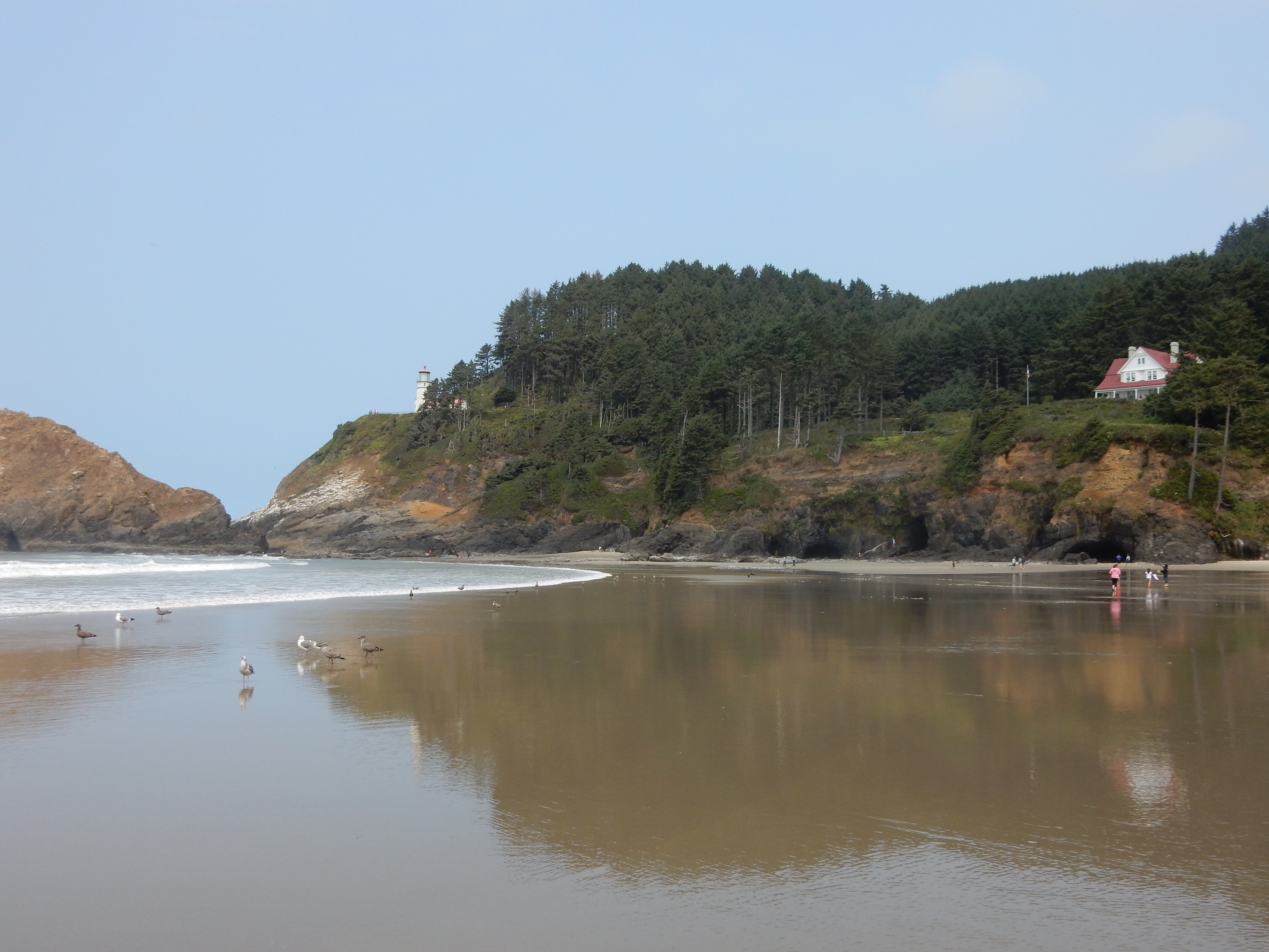A view of the Heceta Head lighthouse and caretaker's residence from the nearby beach.