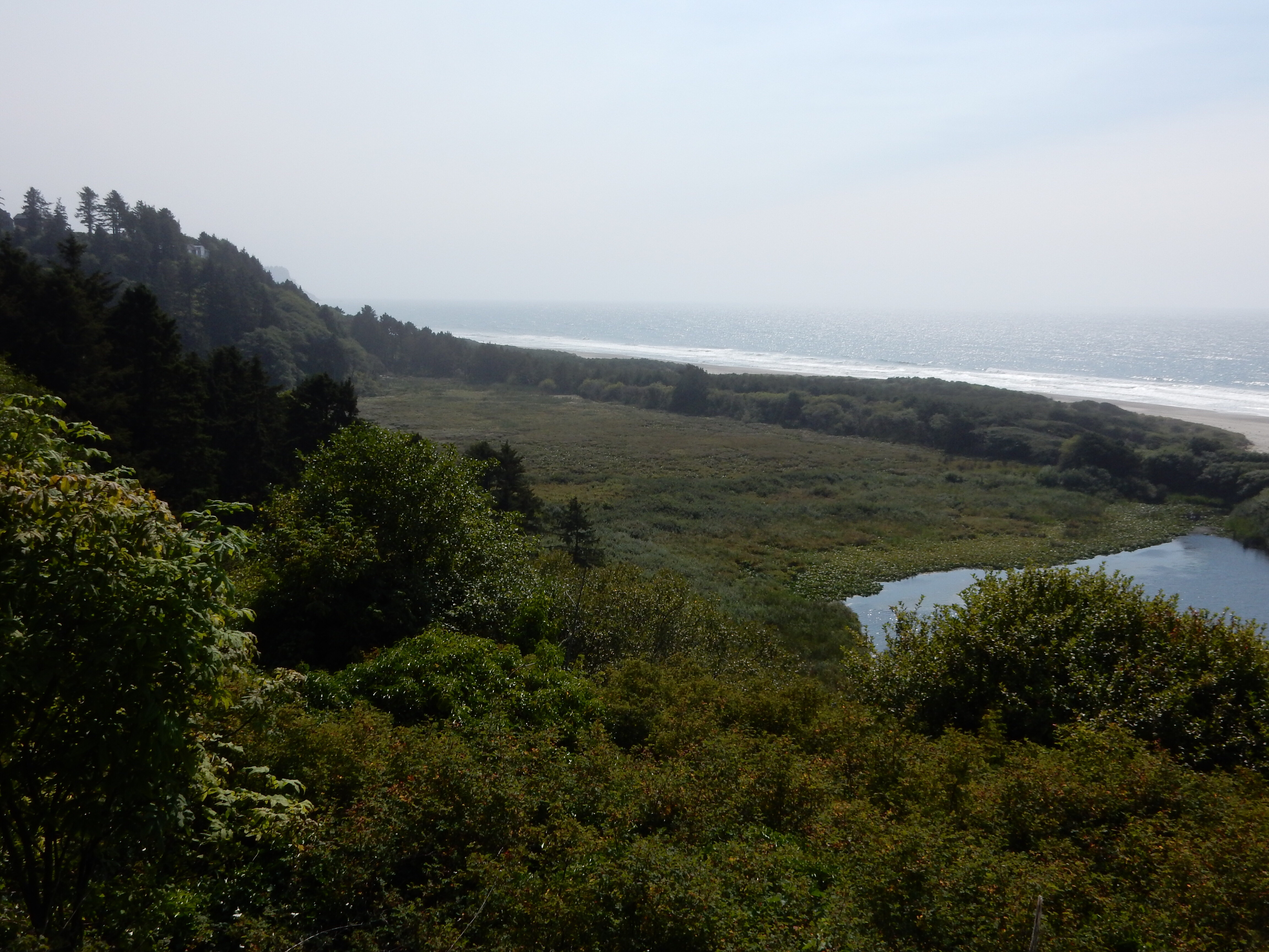 A view south along the coast from an overlook at Winema Lake.