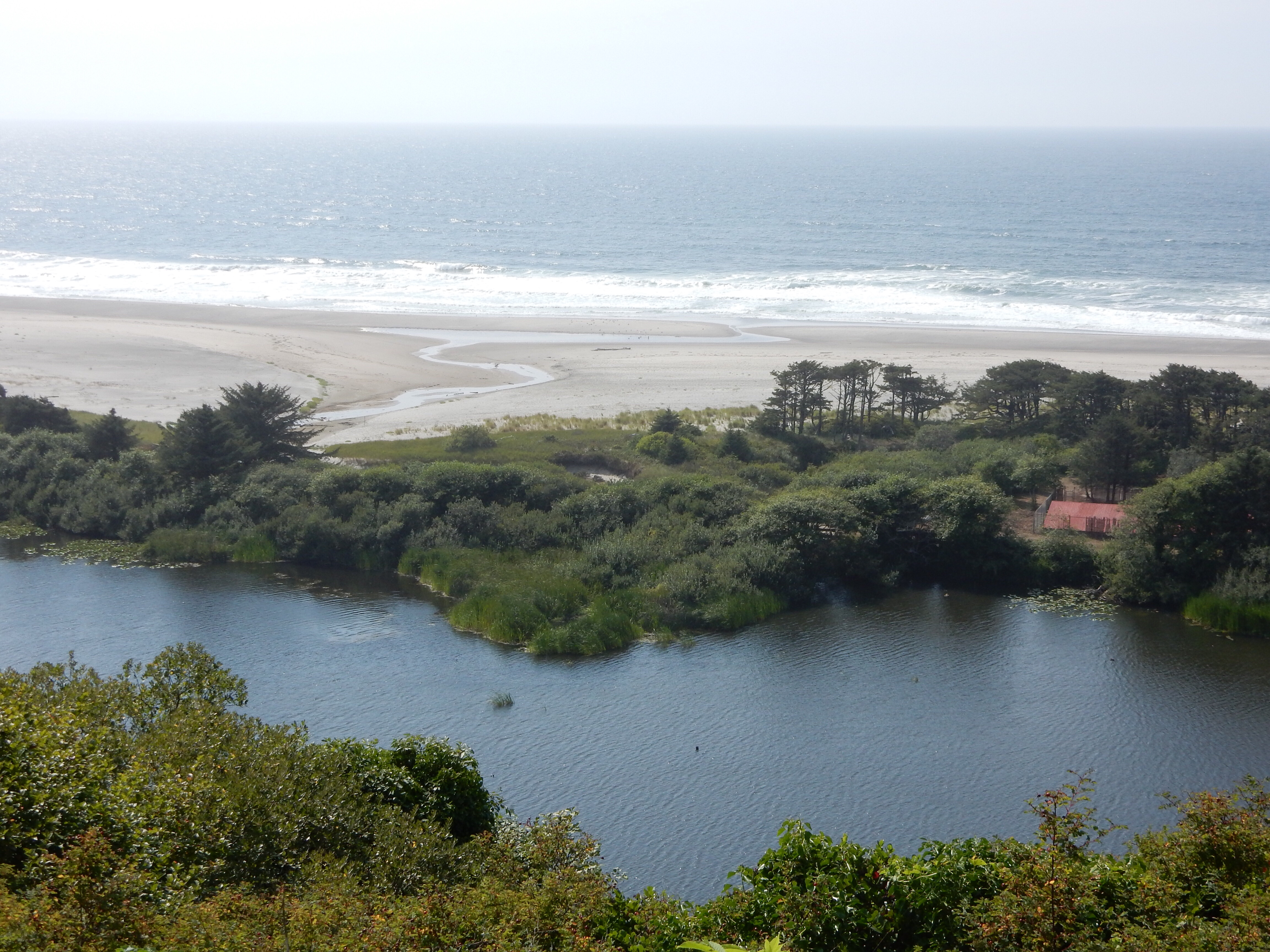 A view of the coast from an overlook at Winema Lake.