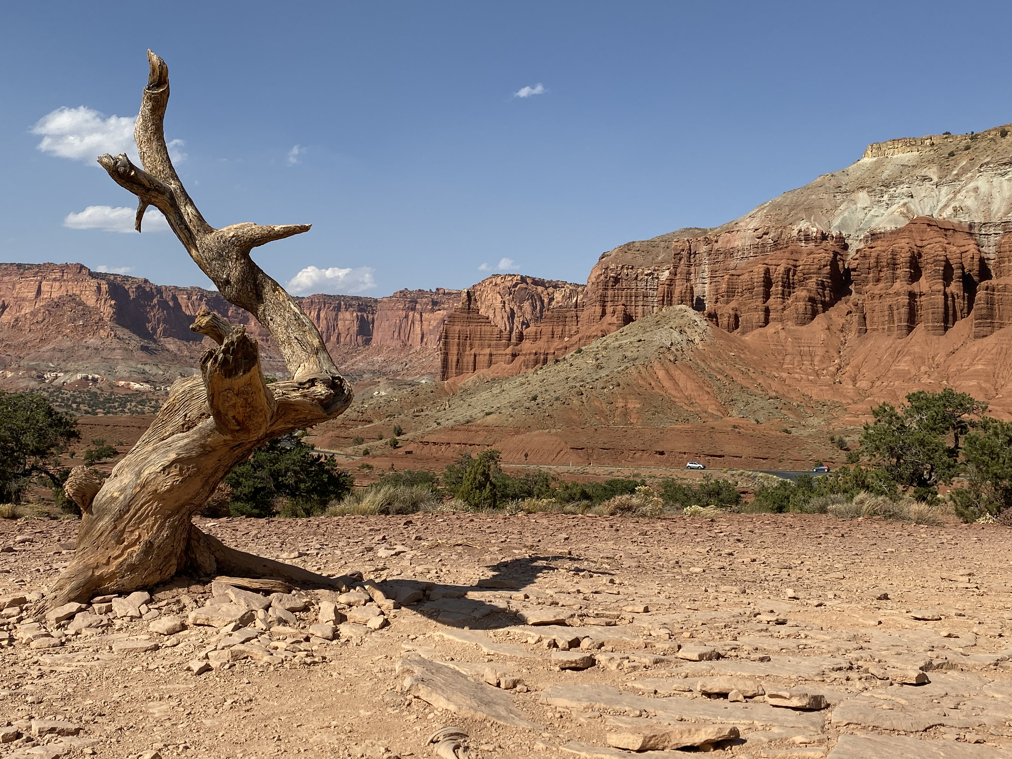 Capitol Reef and Chimney Rock from Panorama Point.
