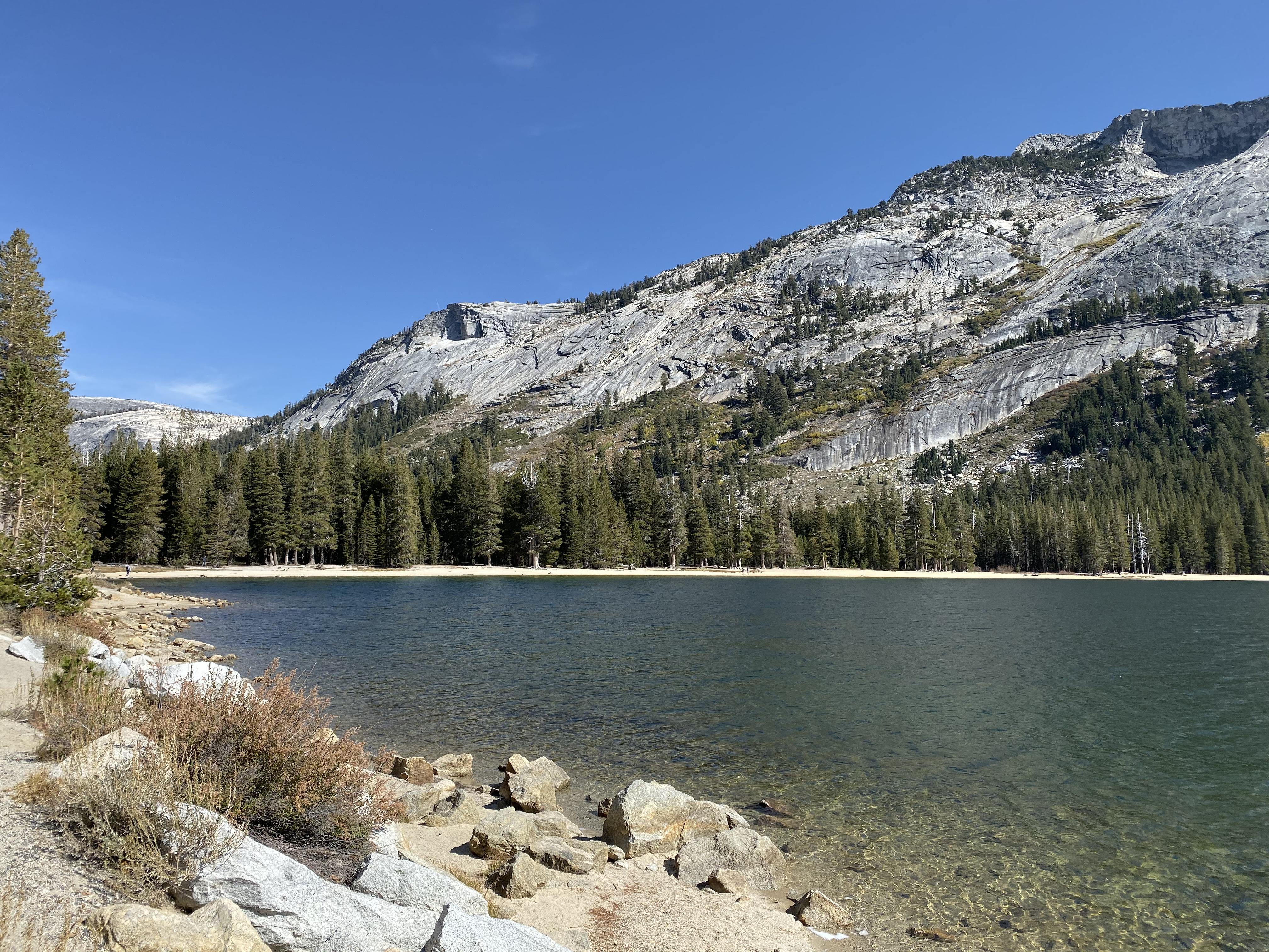 A pretty lake west of Tioga Pass.