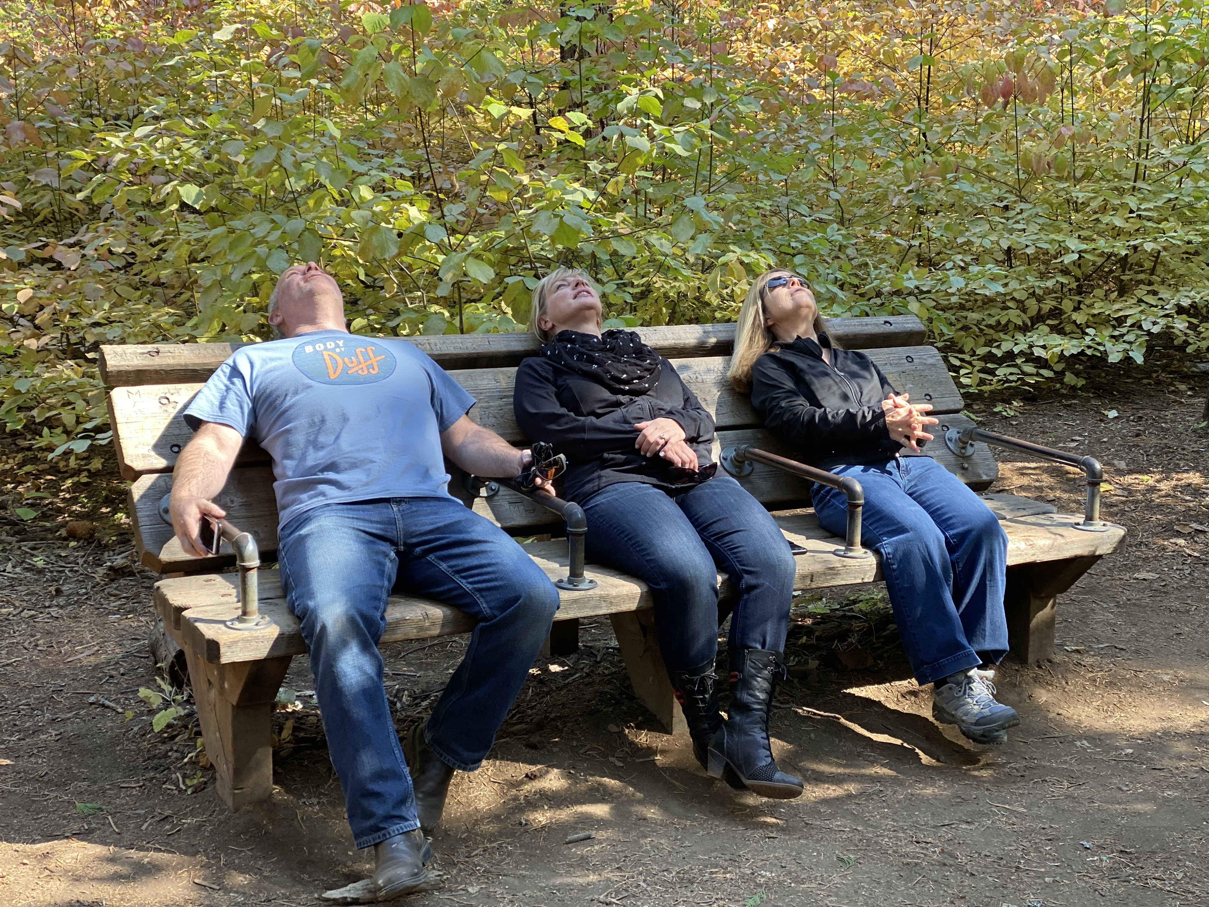Tud, Ange, and Anne use the provided recliner to view the tall Sequoias.