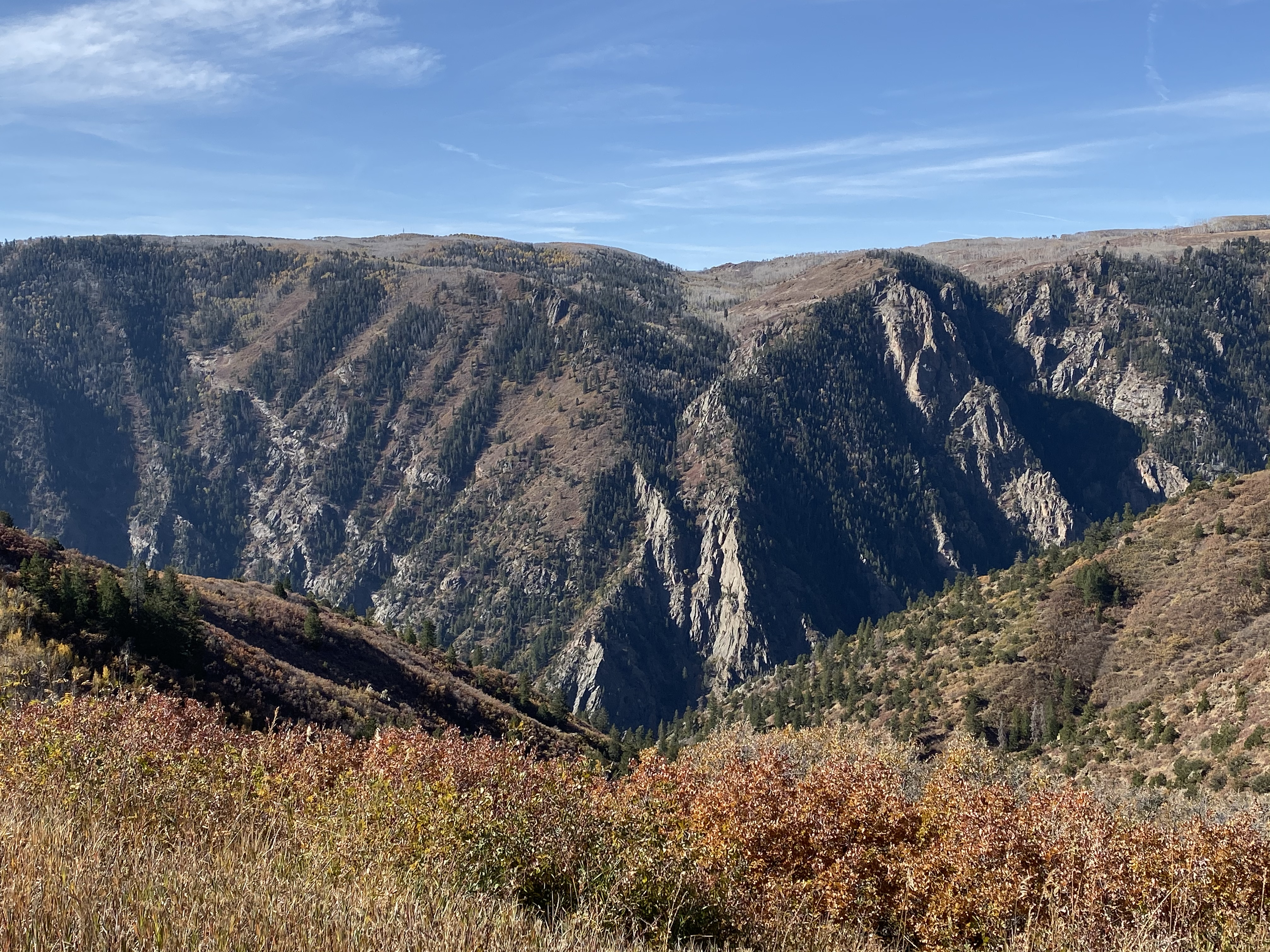 Black Canyon from CO92.